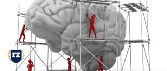 психология в рекламе мозг леса строители гл